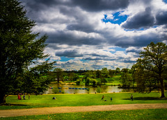 Park Life (aquanout) Tags: landscape scenery clouds serene calming kent grass lake trees people
