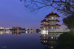 _DTL6711K (magiclove_ld) Tags: nikon nikond610 nikon20mmf18g night nightlight twinpagoda pagoda singapore chinesegarden garden water tree sky