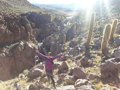 Valle de los cactus (Wen Rou) Tags: elloa sanpedrodeatacama guatin valledeloscactus