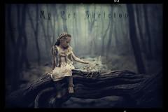 My Pet Skeleton (Patryk Sadowski) Tags: mypetskeleton photoshop northernireland dark grimm illustrations