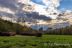 Landscape (gildor86) Tags: poland canon eos 600d clouds landscape outdoor sunset light rays forest