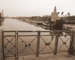 Candados de Amor. Sevilla. (lameato feliz) Tags: candados sevilla puente torre río
