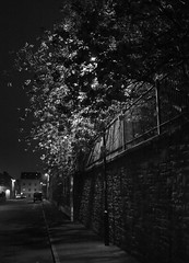 West street (felixspencer2) Tags: street trees blackandwhite bw tree fuji lancashire lampost cherrytree highiso colne x100 iso6400