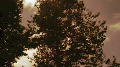 dancing (AtotheNA) Tags: trees sky music nature clouds clip stopmotion vide iphone activechildyouareallisee