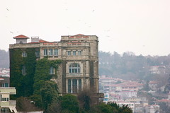 . (ginnyburger) Tags: city travel turkey mediterranean sofia islam istanbul mosque delight turkish haya baklava bosporus