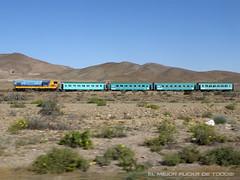 TREN BICENTENARIO   HACIENDA (EL MEJOR FLICK´R DE TODOS!) Tags: tren vallenar bicentenario domeyko ferronor