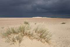 Stormy Sky at Wells 1 (717Images) Tags: sea sky storm beach grass weather clouds coast sand norfolk wells rainclouds