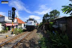 CC 201 83 06 - Sri Tanjung (LPN-SGU) (Fadillah Akbar) Tags: canon indonesia surabaya sepur cc201 ketintang sritanjung ptkai daopviii railwayphotograph stasiunwonokromo pjl3surabaya ka136