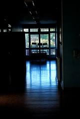 High school (Lavinia Panariello) Tags: school windows rome highschool deserted montale chiars