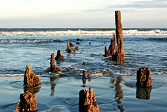 Beach Ruins (sseaburd) Tags: ocean wood old beach beautiful pier sand jetty south charleston driftwood carolina folly groin vision:sky=0651 vision:outdoor=0871 vision:ocean=0597
