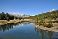 Cascade Ponds (Stella Blu) Tags: mountains reflection landscape albertacanada banffnationalpark twothumbsup cascadeponds nikkor18200 stellablu thumbwrestler favescontestwinner yourock2nd nikond5000 herowinner storybookwinner gamex2sweepwinner gamesweepwinner