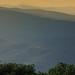 Montalcino hills, Tuscany
