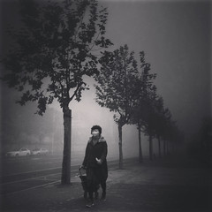 the future we never bargained for~ Shanghai (~mimo~) Tags: china trees woman mobile dark smog asia sad shanghai mask pavement streetphotography pollution iphone mimokhair menaen Potd:country=menaen potd:country=menaar