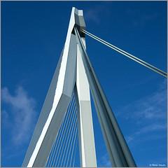 "Erasmus Bridge aka ""De Zwaan"" / ""The Swan"" (Peter Heuts) Tags: city netherlands photography rotterdam sony stadt ville stad erasmusbrug cita dezwaan a99 99 peter heuts alpha"
