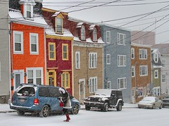 Winter in St. John's (Karen_Chappell) Tags: winter house snow canada newfoundland january stjohns snowing colourful nfld rowhouse jellybeanrow