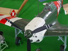 "Morane-Saulnier MS.406 2 • <a style=""font-size:0.8em;"" href=""http://www.flickr.com/photos/81723459@N04/32685914414/"" target=""_blank"">View on Flickr</a>"