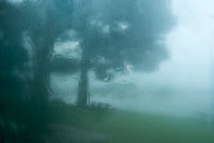 Rainy day (Francisco (PortoPortugal)) Tags: 0332017 20140115fpbo0532 inverno winter chuva rain paisagem landscape porto portugal portografiaassociaçãofotográficadoporto franciscooliveira
