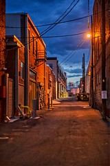 Bull in the Alley Alley (brev99) Tags: perfecteffects17 ononesoftware on1photoraw2017 alley tulsa bradyartsdistrict bluehour buildings bullinthealley lowlight topazdenoise nikdfine colorefex d610 nikon50mmf18d cityscape