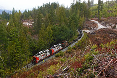 WFP 302 ~ Nimpkish Valley (Chris City) Tags: train railway railroad shortline logging industry forestry wfp sw1200rs nimpkishvalley vancouverisland woss