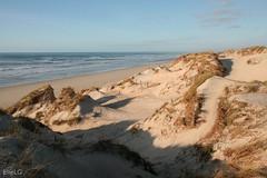 Dunes, La Torche, Brittany (Elie Le Goc) Tags: dunes érosion sable oyat zen zénitude