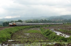 Argo Parahyangan Meliuk Tiber Padalarang (Muhammad Fajar R) Tags: argo parahyangan padalarang daop 2 bandung tikungan besar indonesia barat cipularang