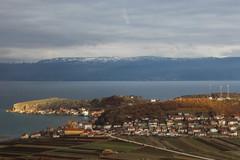 Lin and Lake Ohrid seen from the bus (Timon91) Tags: albania albanië shqipëria shqipëri ohrid lake meer охридско езеро ohridsko ezero liqeni ohrit