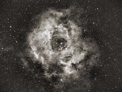 Rosette Nebula (eBear Foto) Tags: rosette ha astro astrophotography ngc2237