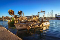 Toulon Harbor
