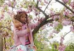 Bellis ... ein Traum in rose ... (Kindergartenkinder) Tags: baum park annette himstedt dolls grugapark essen gruga frühling kindergartenkinder bellis ostern blüte personen
