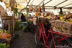 (by claudine) Tags: basil basket bicycle bike black brown byclaudinecom colorful garlic green italy market mint outdoor red roma streetvendor travelphotographyworldphotosuniquebyclaudine vegetables rome travel