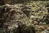Ještěd (kaddafi210) Tags: pancolar 50mm pancolar1850 1850 m42 samsung samsungnx210 mirrorless czech retro carlzeissjena ausjena gdr nature rocks mouintain