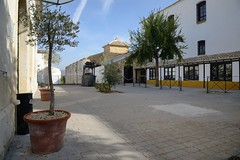 0610-20161016_Hacienda La Laguna Olive Oil Museum-Baeza-Spain-looking towards Museum (centre), Reception and Shop on R (Nick Kaye) Tags: baeza andalucia spain europe museum oliveoil
