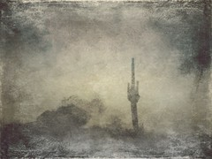 Arid (lindyginn) Tags: ginn photo painting art finger desert cactus clouds arid dry ethereal surreal watercolor dream grey black grunge dark eerie