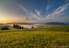 Morning in Alpe di Siusi (Hans Kruse Photography) Tags: alpedisiusi italy dolomites sassopiatto sassolungo langkofel plottkofel seiseralm