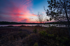 Humbled (DJawZ) Tags: nj pines pine barrens sunset clouds water pond trees wild fujifilm xt2 sky