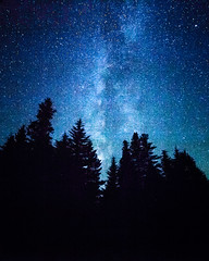 Doug Firs and the Stars! ([ raymond ]) Tags: astrophotography forest milkyway night oregon stars trees trilliumlake blue sky silhouette dougfirs douglasfir