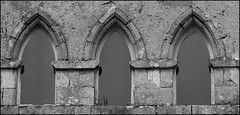Abbaye Note-Dame-de-Joye, commune d'Hennebont (Bretagne, Morbihan, France) (bobroy20) Tags: abbaye hennebont paysdelorient morbihan architecture bretagne fenêtre blavet patrimoinebreton histoire tourisme france