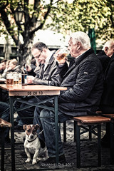 Biergarten in Munich (Johannes Oehl) Tags: jug bokeh streetphotography peoplephotography groupofpeople smallgroupofpeople candidphotography creativeimage chordata person munich atmosphericmood highcontrast adultsonly beergarden caniformia beer blur paleskin fulllength upperbavaria carnivora canis midday glassware dog relaxing woodenbench greenbackground europe relaxation bottle profile portrait sitting malehairstyle satisfied citylife naturallight old blurredbackground germanethnicity noon colorimage canidae drinking fullbody animal spring alcoholicbeverage 6069years grayhair plant tree woodentable draftbeer vikutalienmarkt bavaria maleadultsonly mammal germany beerglass shorthaired