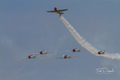 SnF20150425-1567.jpg (flyer_2001) Tags: skytypers prattwhitney usa lakelandairport r1340an1 formations geico florida displayteam northamerican snj2 sunnfun pw lakeland