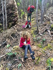 Recording what they have observed. Mt Beattie track.