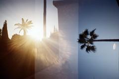 (statoingravitto) Tags: dianamini lomo lomography analog film filisnotdead 35mm light sunset palms andalucía doubleexposure