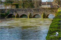 """Pont des Grilles """"2017"""" (Christian Labeaune) Tags: 2017 villages christianlabeaune châtillonnais pontdesgrilles laseine chatillonsurseine21400 côtedorbourgognefranchecomté france"""