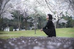 SAKURA (ai3310X) Tags: none carlzeiss ycontax sonnar t2885 ポートレート portraits 桜