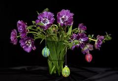 Week-Before-Easter Bouquet (suzanne~) Tags: tulip bluediamondtulip bouquet indoor stilllife easter lent egg easteregg handpainted hollowegg purple lensbabyvelvet56
