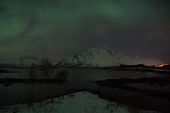 (clemensgilles) Tags: nordlys norway nordland lofoten polar lights northern night aurora borealis