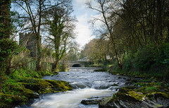 The River Tavy... (Go placidly amidst the noise and haste...) Tags: tavistock tavy dartmoor benedictine abbey southwest westcountry devon bridge tower castellation castellated