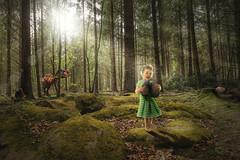 egg hunt (erwann.martin) Tags: child egg hunt family erwannmartin series girl green forest humour