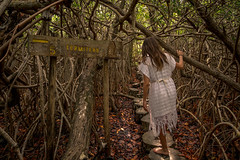 Tulum CESIAK org national park cenote mangroves-4