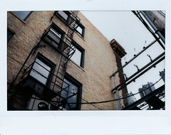 (|Digital|Denial|) Tags: instaxwide fujifilm colour instantphotography analog film bricks building backalley fireescape wroughtiron powerlines sky urban