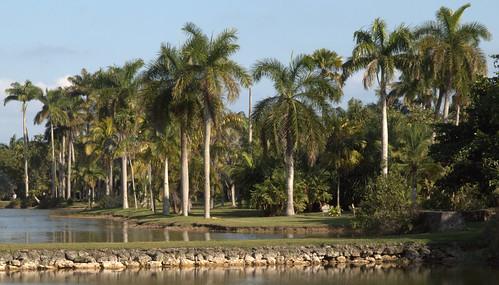 Fairchild Arboretum